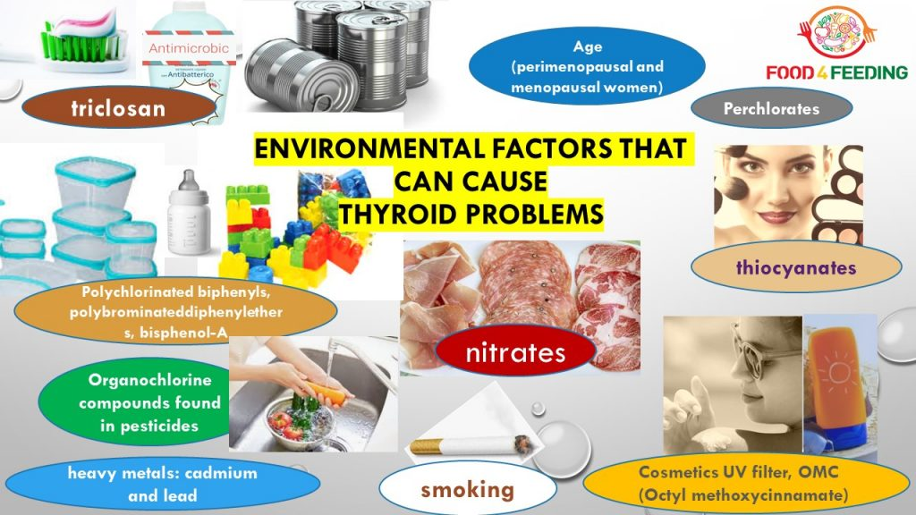 Thyroid: nutrition and environment – Food for Feeding